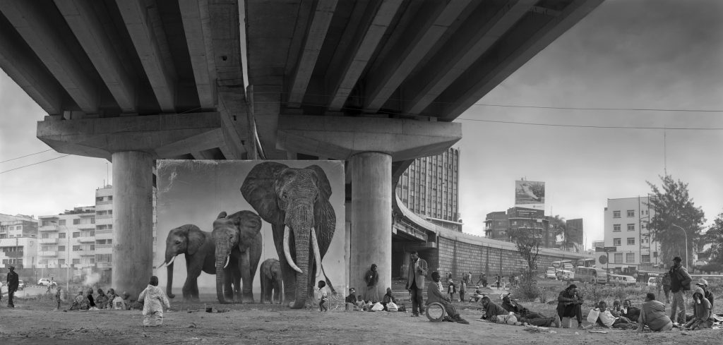Underpass with Elephants - Nick Brandt - Inherit the Dust